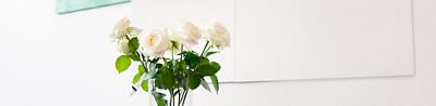 clinique-bois-cerf-fleurs