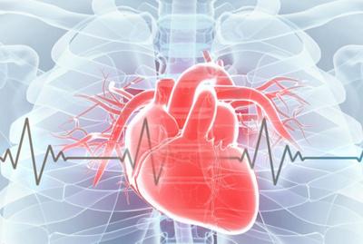 Illustration Herz mit Herzschlag.