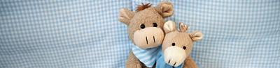 Nuscheli Ernie und Ernest